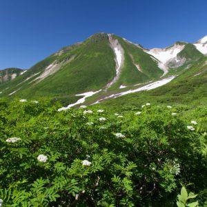 白山めぐりツーリング(大嵐山登山口)